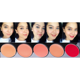 Lip Color Palette (Peplum Pink)